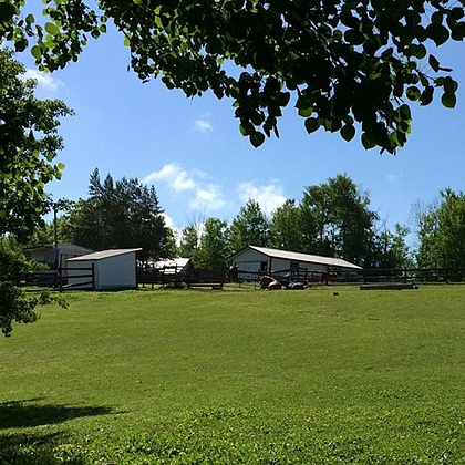 The equestrian side of the Grandparents' acreage; horse shelters, barns, paddocks...