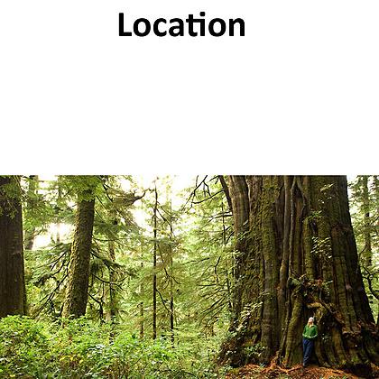 The beautiful temperate rainforests and wild coastlines of Port Renfrew will be ideal for shooting