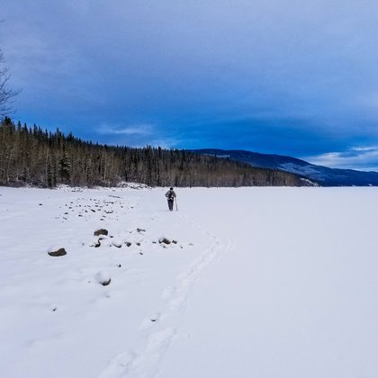 "I took this photo last winter while I was snowshoeing and checking out the creek called ""5 Mile"". I saw this community member headed to check out his trapline. Only carrying what he needed on his back. It's fitting that it fits here."