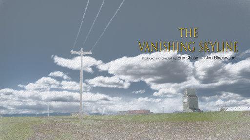 The Vanishing Skyline