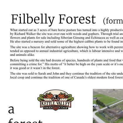 Filbelly Forest (formerly Dragon's Eye Nursery) is an incredible 3 acres just outside of Grand Forks, BC. Here hundreds of trees, shrubs and plants show the potential of what perennial agriculture can offer.